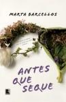 Antes que Seuqe Marta Barcellos resenha Prêmio Sesc Literatura 2015